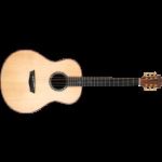WASHBURN BTS 24 S (N) - gitara akustyczna